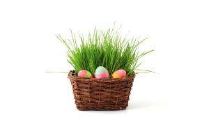 Koszyczek pełen Wielkanocnych życzeń od B4internet
