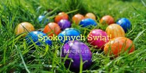 Pogodnych Świąt Wielkanocnych życzy B4INTERNET
